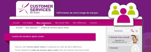 Site de Customer Services by ESDI