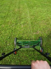 tonte pelouse écologique